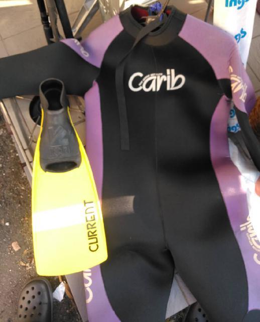 ウェットスーツとフィンの画像